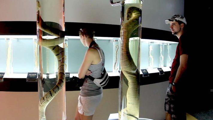 Snake Farm, Bangkok.