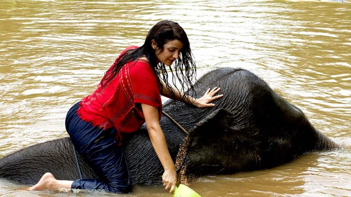 Elephant in the river with a woman.